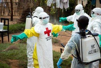 Ежедневно в ДРК регистрируют порядка 12 новых случаев заражения Эболой