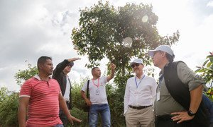 安理会本月轮值主席国秘鲁常驻联合国代表维拉斯凯兹(左二)在7月11日至14日期间率领安理会代表团对哥伦比亚进行了访问,右二为比利时常驻联合国代表德布伊茨沃夫。