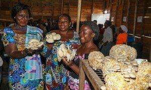 Kitengo cha tabia na nidhamu cha MONUSCO kinasaidia manusura wa ukatili na unyanyasaji wa kingono eneo la Sake jimboni Kivu Kaskazini nchini Jamhuri ya Kidemokrasia ya Congo, DRC.