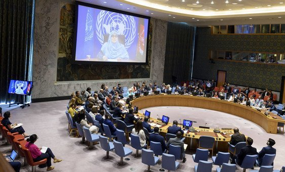 Jamila Afghani, Women's International League for Peace and Freedom-Afghanistan (WILPF) updates the Security Council via video link. (26 July 2019),