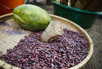 Haricots et papaye à vendre sur un marché routier à Kibanga, en République Démocratique du Congo.